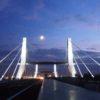 11a - Autostrada BSVRVIPD SpA - A31 Valdastico Sud - Ill. artistica Ponte sul Bacchiglione, Longare (VI) #1